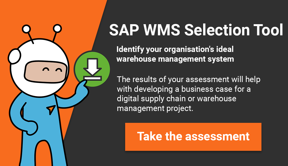 SAP WMS SELECTION TOOL 2 blue